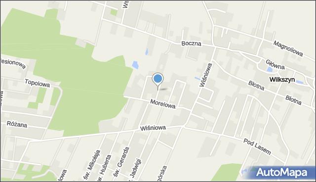 Wilkszyn, Trzech Króli, mapa Wilkszyn