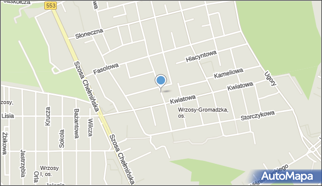 Toruń, Tulipanowa, mapa Torunia