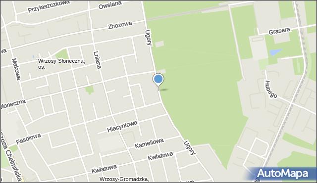 Toruń, Ugory, mapa Torunia