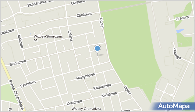Toruń, Urodzajna, mapa Torunia