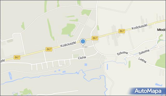 Lubaczów, Walecznych, mapa Lubaczów