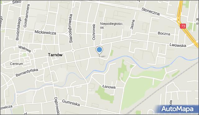 Tarnów, Warzywna, mapa Tarnów