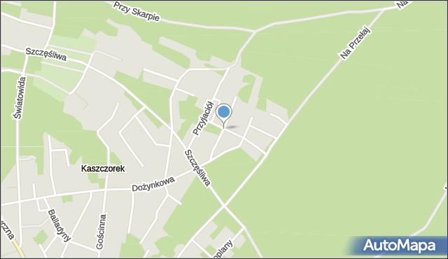 Toruń, Wakacyjna, mapa Torunia