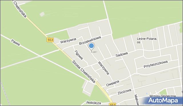 Toruń, Warzywna, mapa Torunia