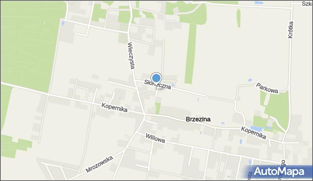 Brzezina gmina Miękinia, Wiosenna, mapa Brzezina gmina Miękinia