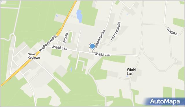 Luzino, Wielki Las, mapa Luzino