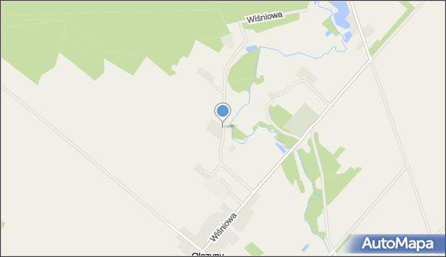 Olszyny gmina Piątnica, Wiśniowa, mapa Olszyny gmina Piątnica