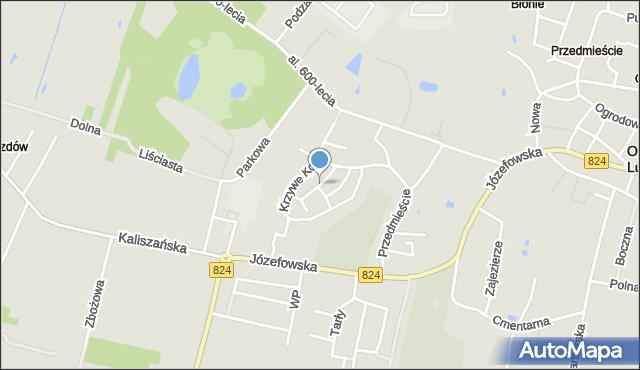 Opole Lubelskie, Witosa Wincentego, mapa Opole Lubelskie