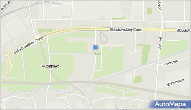 Toruń, Wierzbowa, mapa Torunia
