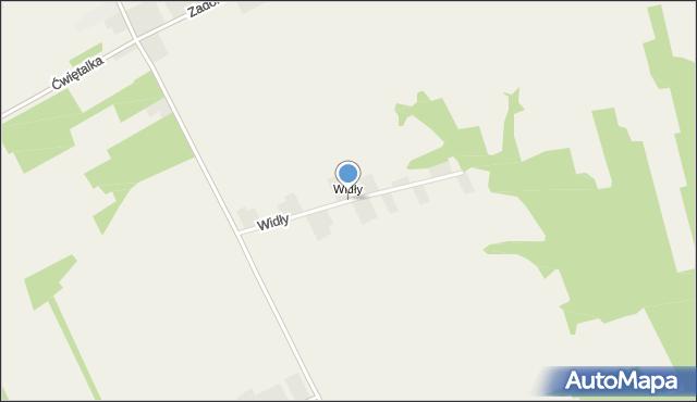 Wandalin gmina Opole Lubelskie, Widły, mapa Wandalin gmina Opole Lubelskie