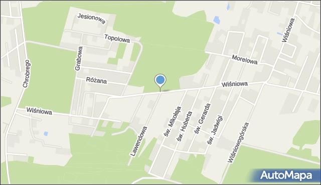 Wilkszyn, Wiśniowa, mapa Wilkszyn