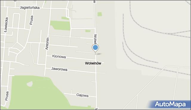 Chełm, Wolwinów, mapa Chełma