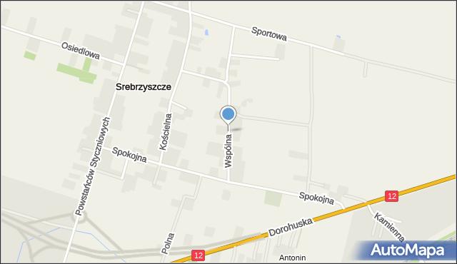 Srebrzyszcze, Wspólna, mapa Srebrzyszcze