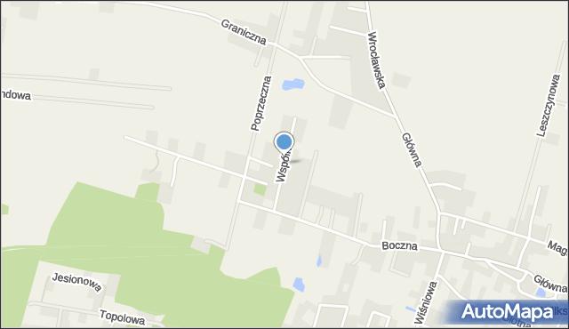 Wilkszyn, Wspólna, mapa Wilkszyn