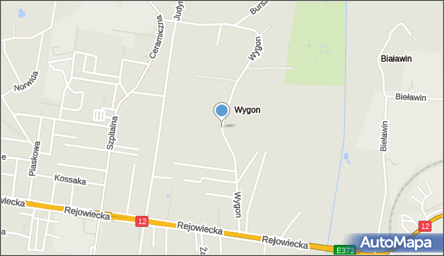 Chełm, Wygon, mapa Chełma