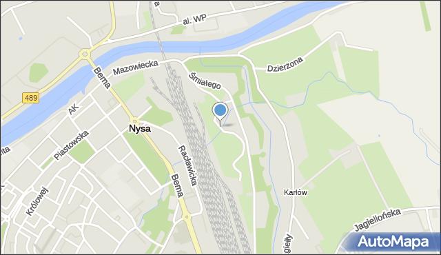 Nysa, Zamoyskiego Jana, hetm., mapa Nysy