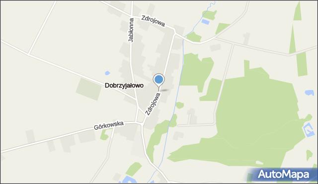Dobrzyjałowo, Zdrojowa, mapa Dobrzyjałowo