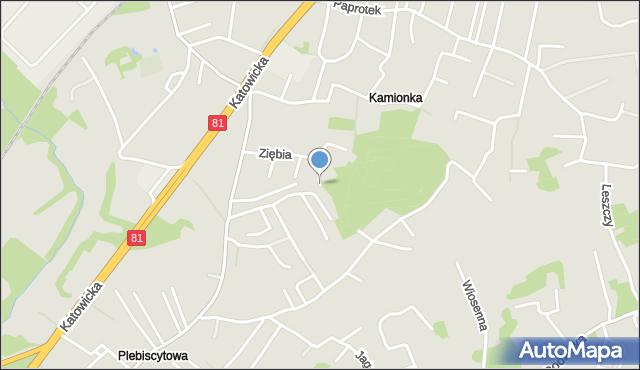 Mikołów, Ziębia, mapa Mikołów