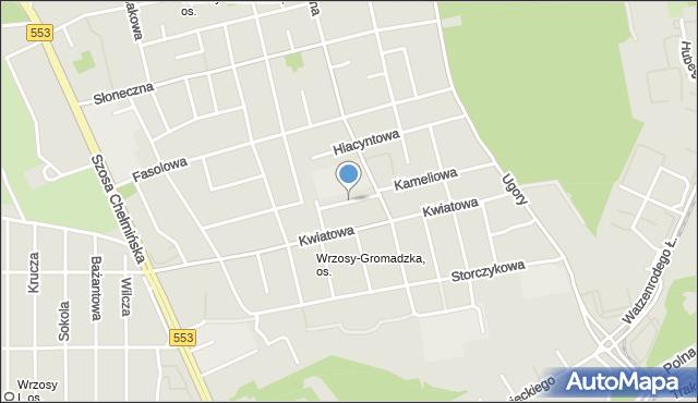 Toruń, Zielna, mapa Torunia