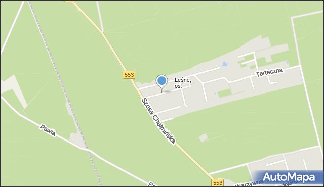 Toruń, Żywiczna, mapa Torunia