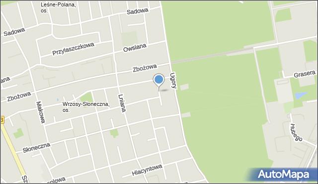 Toruń, Żyzna, mapa Torunia
