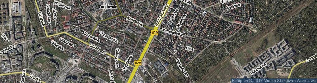 Zdjęcie satelitarne Amelińska ul.