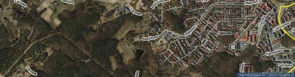 Zdjęcie satelitarne Bazyliowa ul.