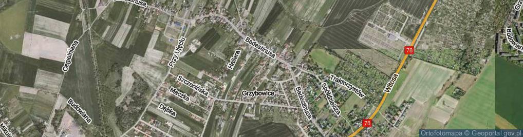 Zdjęcie satelitarne Bednorza Roberta, prof. ul.