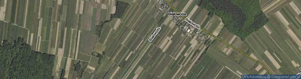 Zdjęcie satelitarne Białowoda ul.