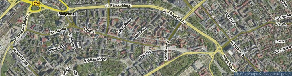 Zdjęcie satelitarne Białówny Ireny, dr. ul.