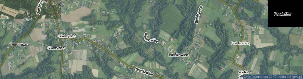 Zdjęcie satelitarne Bieńkowice ul.