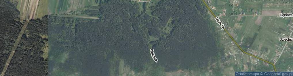 Zdjęcie satelitarne Borkowa ul.