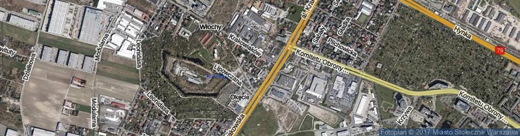 Zdjęcie satelitarne Boryny ul.