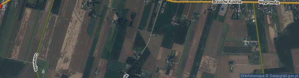 Zdjęcie satelitarne Brzozów-Kolonia ul.