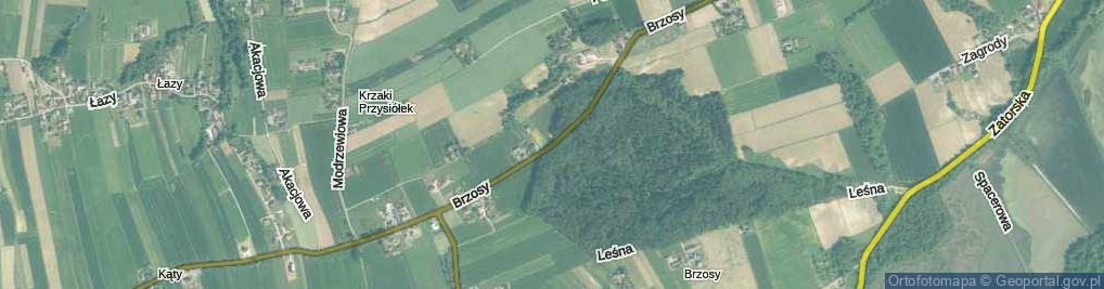 Zdjęcie satelitarne Brzosy ul.