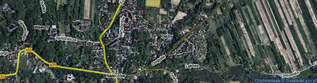 Zdjęcie satelitarne Brzozy ul.