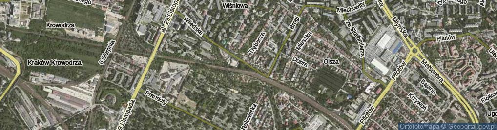 Zdjęcie satelitarne Czerwonego Prądnika ul.