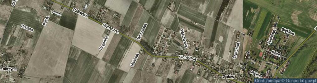 Zdjęcie satelitarne Daktylowa ul.