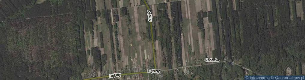 Zdjęcie satelitarne Dębiny ul.