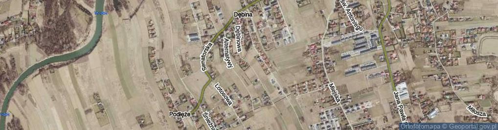 Zdjęcie satelitarne Dębinowa ul.