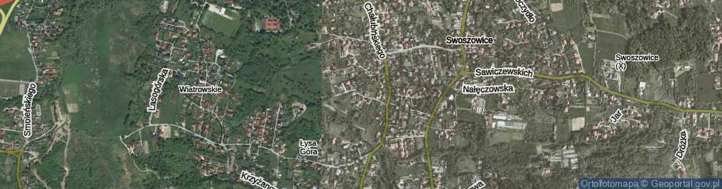 Zdjęcie satelitarne Druskiennicka ul.