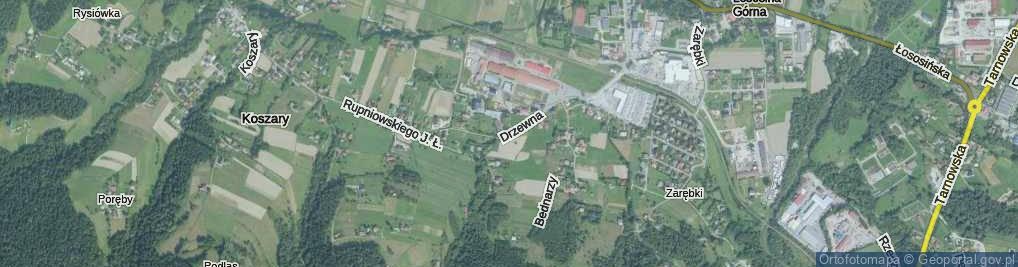 Zdjęcie satelitarne Drzewna ul.
