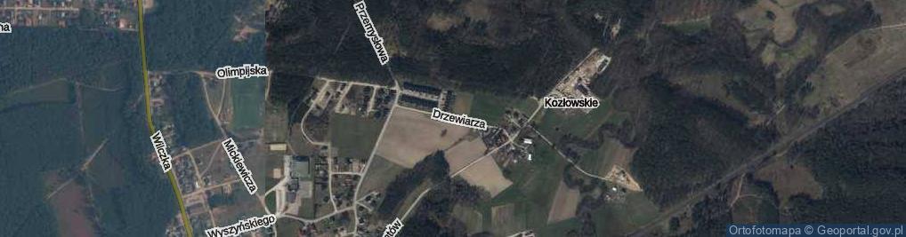 Zdjęcie satelitarne Drzewiarza ul.