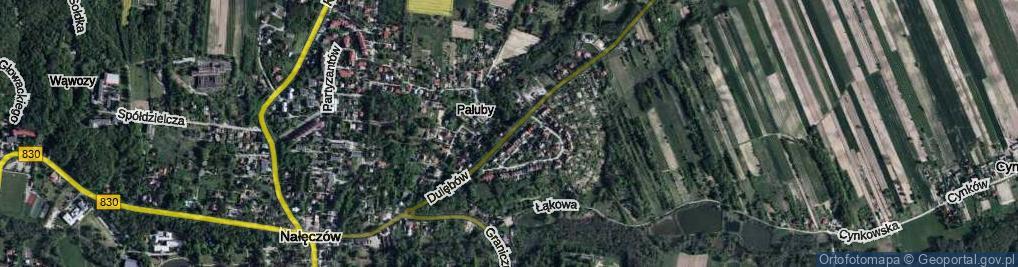 Zdjęcie satelitarne Dulębów Heleny i Kazimierza ul.