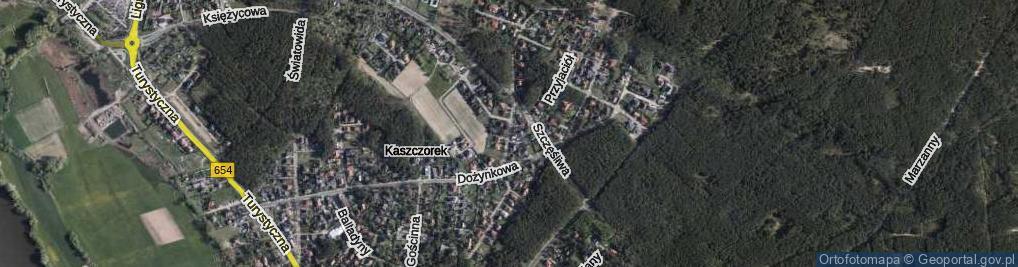 Zdjęcie satelitarne Dyngusowa ul.