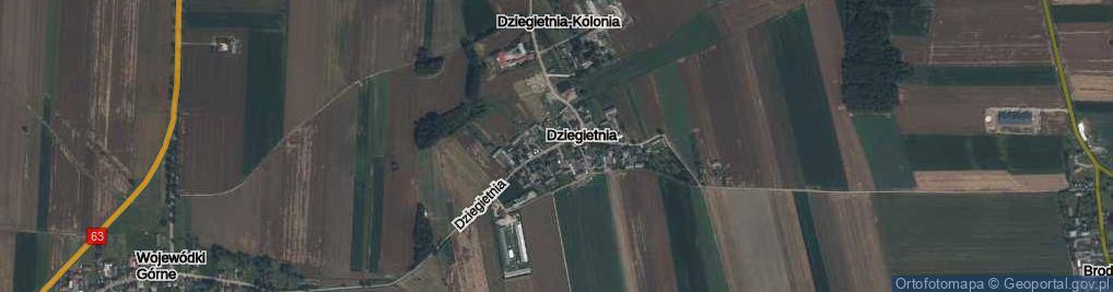 Zdjęcie satelitarne Dziegietnia ul.