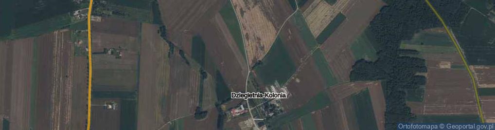 Zdjęcie satelitarne Dziegietnia-Kolonia ul.