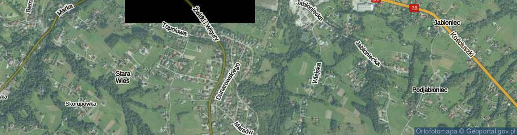 Zdjęcie satelitarne Działkowców ul.