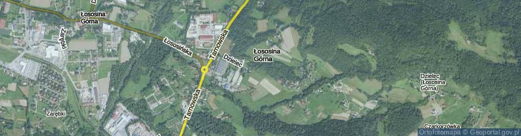 Zdjęcie satelitarne Dzielec ul.