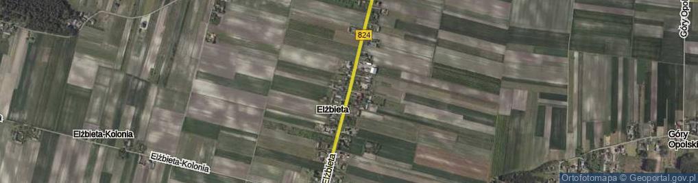 Zdjęcie satelitarne Elżbieta ul.